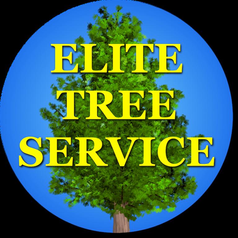 Services - Elite Tree Service