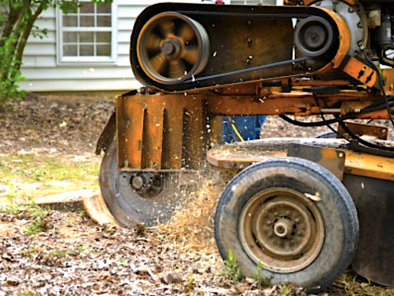 Stump Grinding Portland Oregon